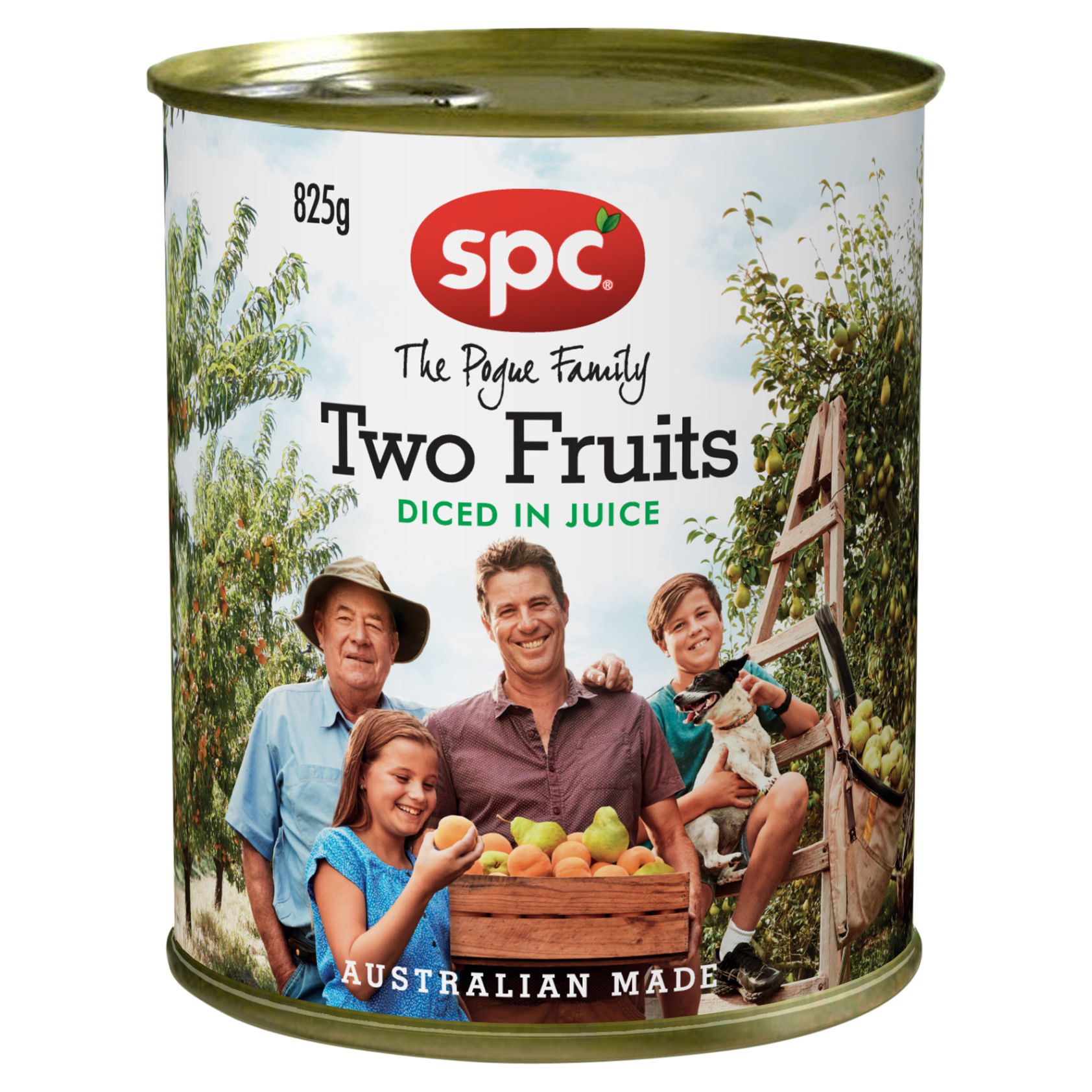 SPC Diced Two Fruits in Juice 825g
